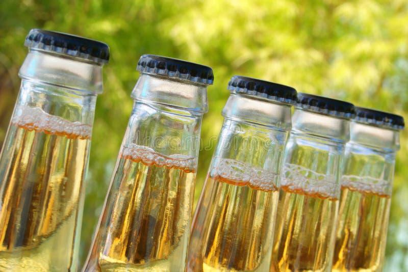 Flessen bier stock fotografie
