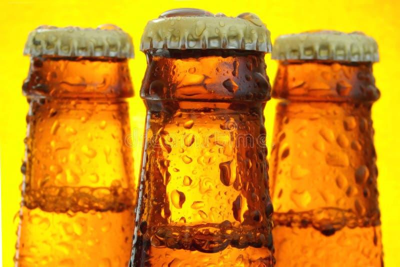 Flessen bier stock afbeeldingen