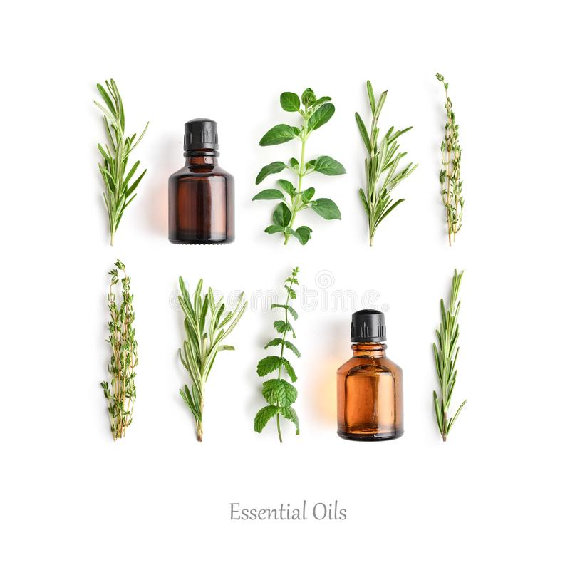 Flessen met etherische oliën en verse kruiden stock foto