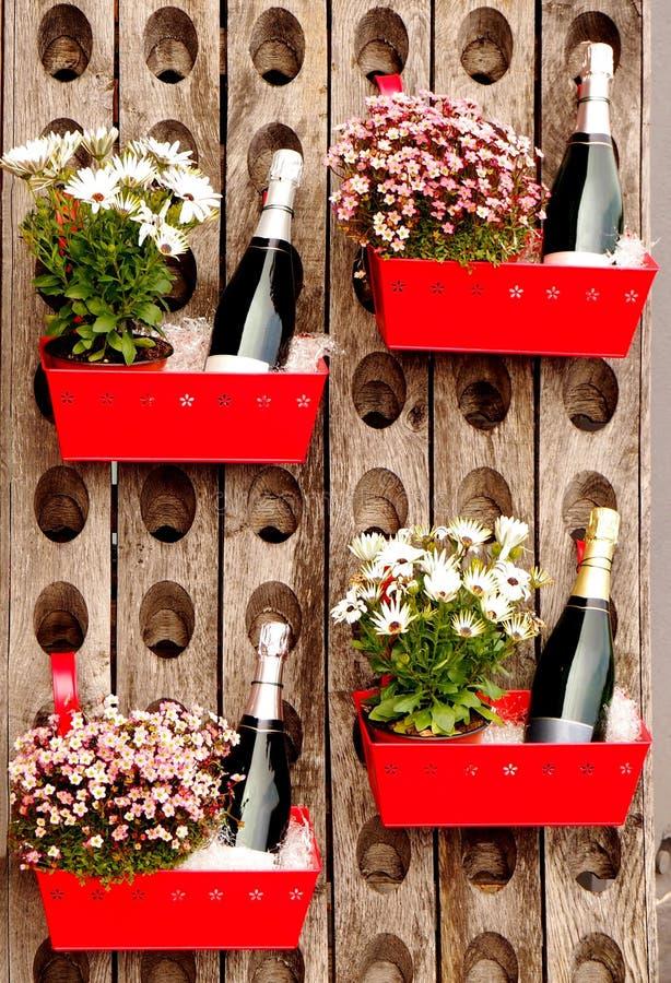 Flessen mousserende wijn, elke in een rode metaalcontainer met een bloempot, in een oud houten wijnrek stock afbeeldingen