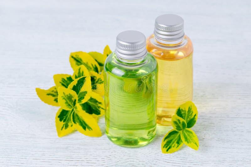 Flessen natuurlijke douchegel en shampoo met installaties royalty-vrije stock fotografie