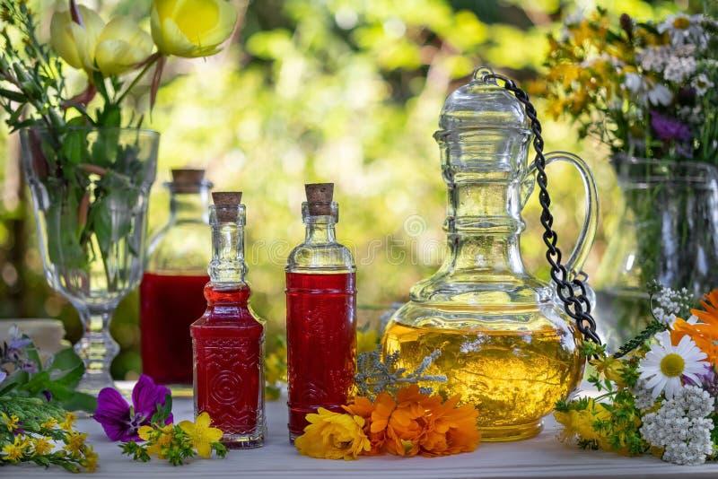 Flessen St John wort en teunisbloemolie met een mengeling van geneeskrachtige kruiden royalty-vrije stock foto's