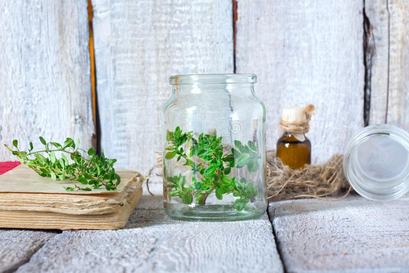 Flessen thyme, etherische olie, kruidengeneeskunde op witte houten achtergrond royalty-vrije stock foto