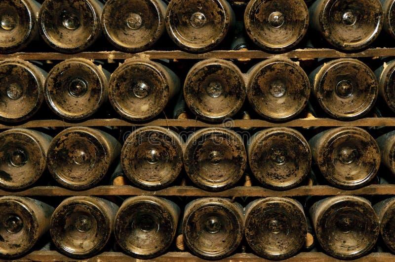 Flessen in wijnkelder stock fotografie