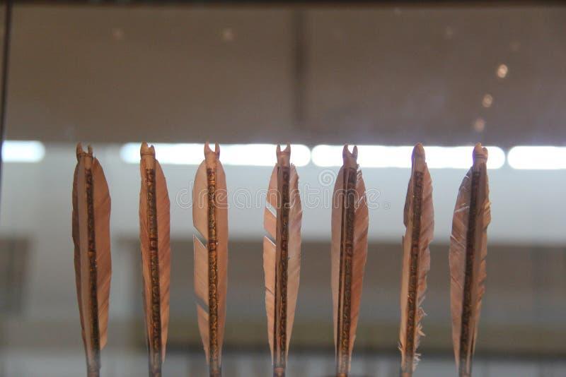 Fletchings и Nocks стрелки пера стоковое фото
