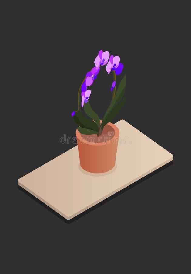 Fleur à la maison dans l'illustration-vektorgrafik isométrique de vecteur de concept de vecteur de pot illustration stock