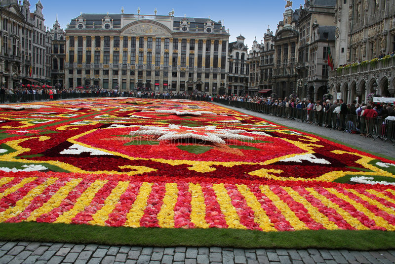 Fleur 11 de tapis images libres de droits