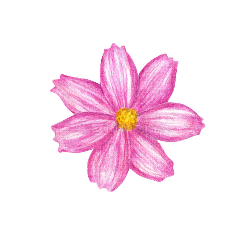 Download Fleur illustration de vecteur. Illustration du fond, fleur - 56479360