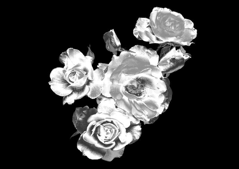 Fleur argentée photo libre de droits