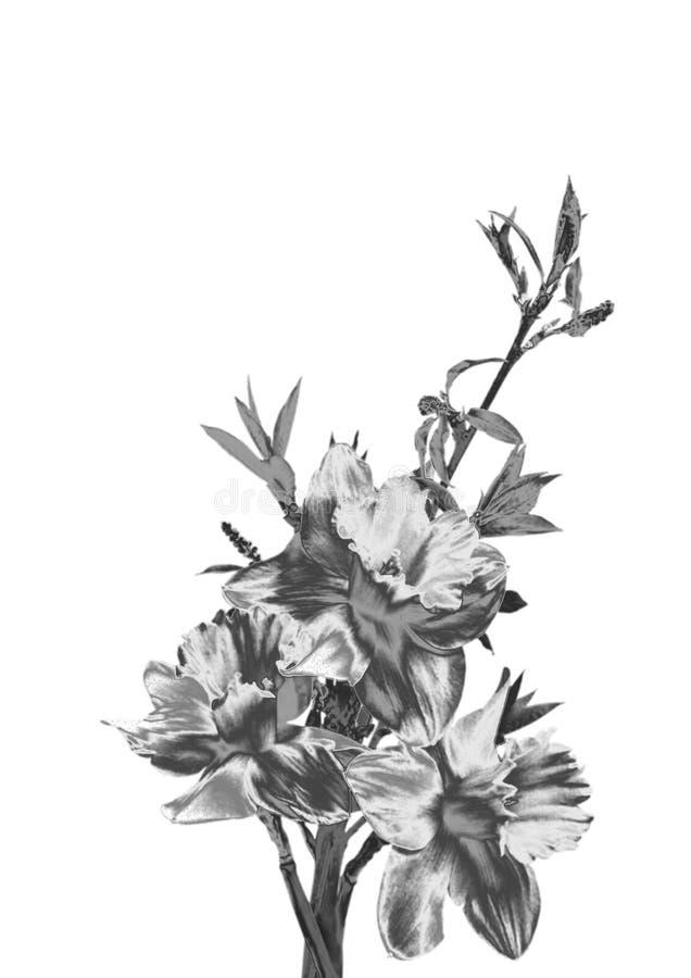 Fleur argentée photographie stock libre de droits