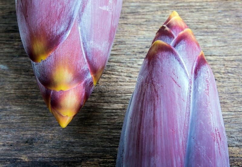 Fleur argentée de banane de bluggoe photos libres de droits