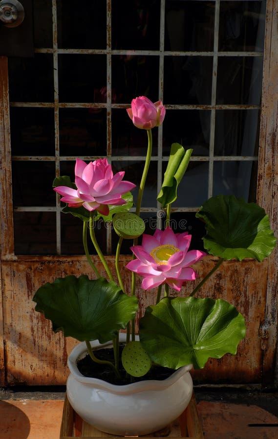 Fleur artificielle, fleur de lotus d'argile image libre de droits