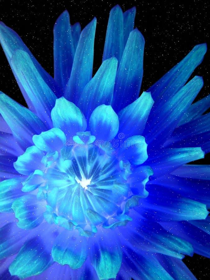 Fleur au néon lumineuse image libre de droits