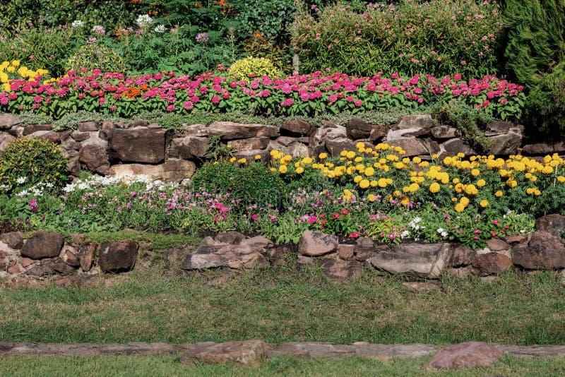 Fleur avec décoré dans le jardin photographie stock libre de droits