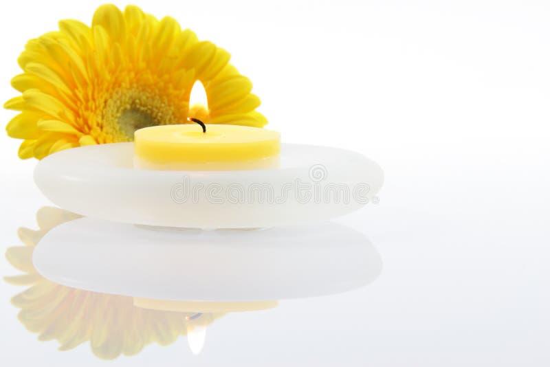 Fleur avec la bougie image stock