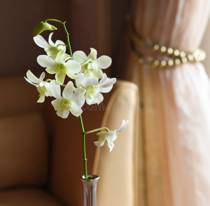 Fleur blanche d'orchidée dans le vase argenté images libres de droits