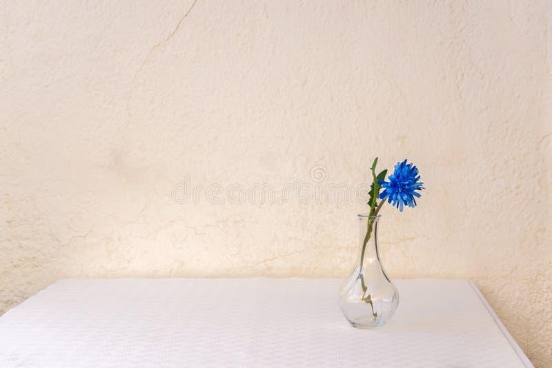 Fleur bleue dans le vase en verre sur la table blanche contre le mur jaun?tre ?g? photos stock