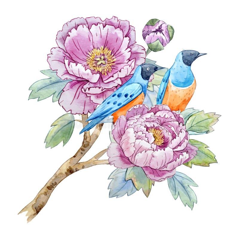 Fleur chinoise de pivoine d'aquarelle illustration de vecteur