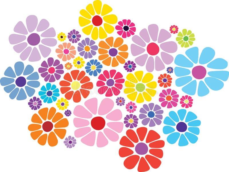 Fleur colorée de marguerite   illustration de vecteur