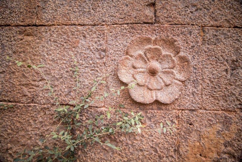 Fleur décorative raclée sur le mur de roche image stock