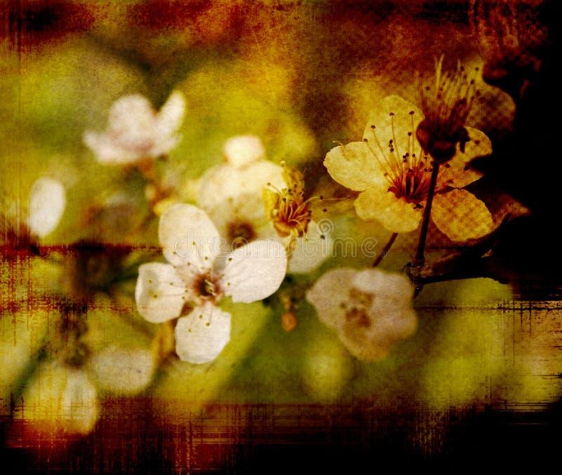 Fleur démodée illustration libre de droits