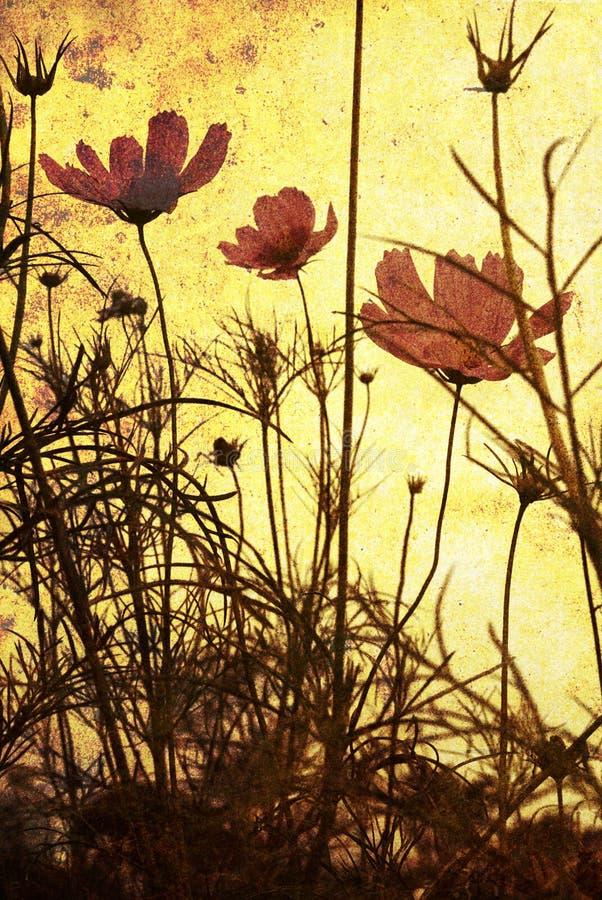 Fleur démodée photos stock