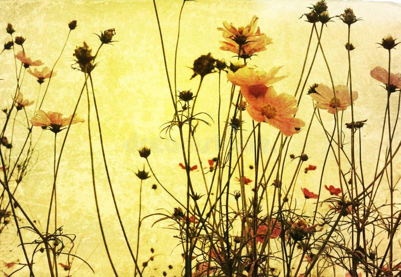 Fleur démodée photo libre de droits