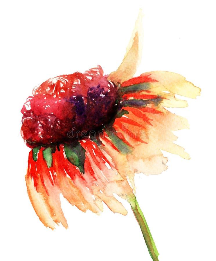 Fleur D été Image stock
