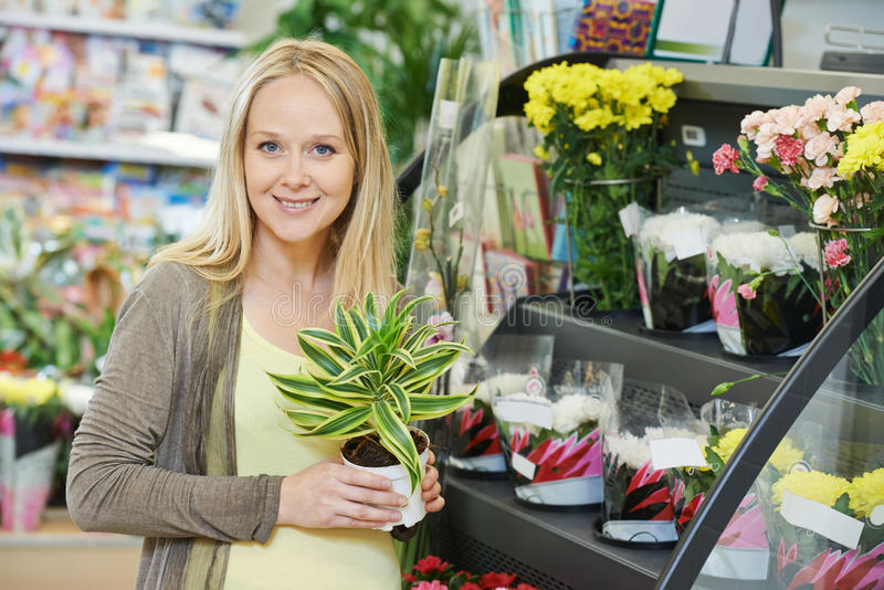 Fleur d'achats de femme dans le magasin photos stock