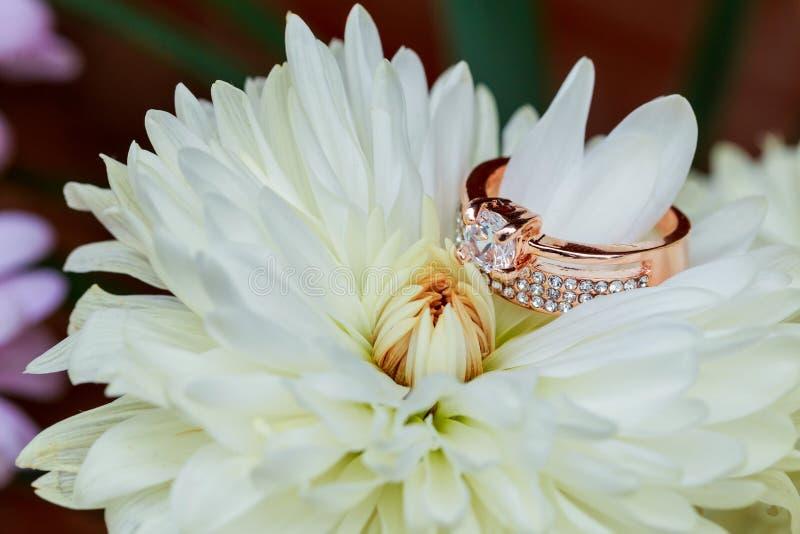 Fleur d'amour de jour de valentines de bague à diamant images libres de droits