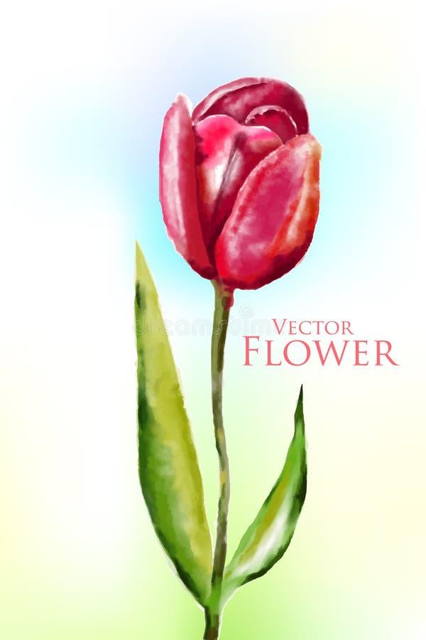 Fleur d'aquarelle illustration stock