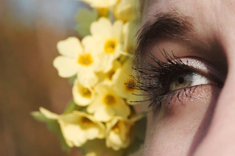 Download Fleur d'oeil et de jaune photo stock. Image du brun, couleurs - 740516