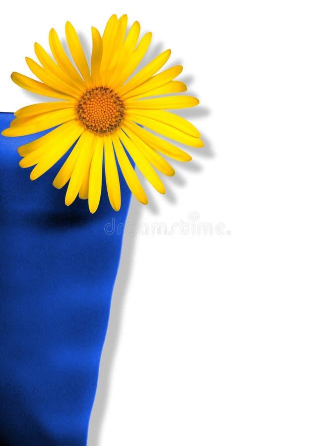 Fleur dans la cuvette images libres de droits