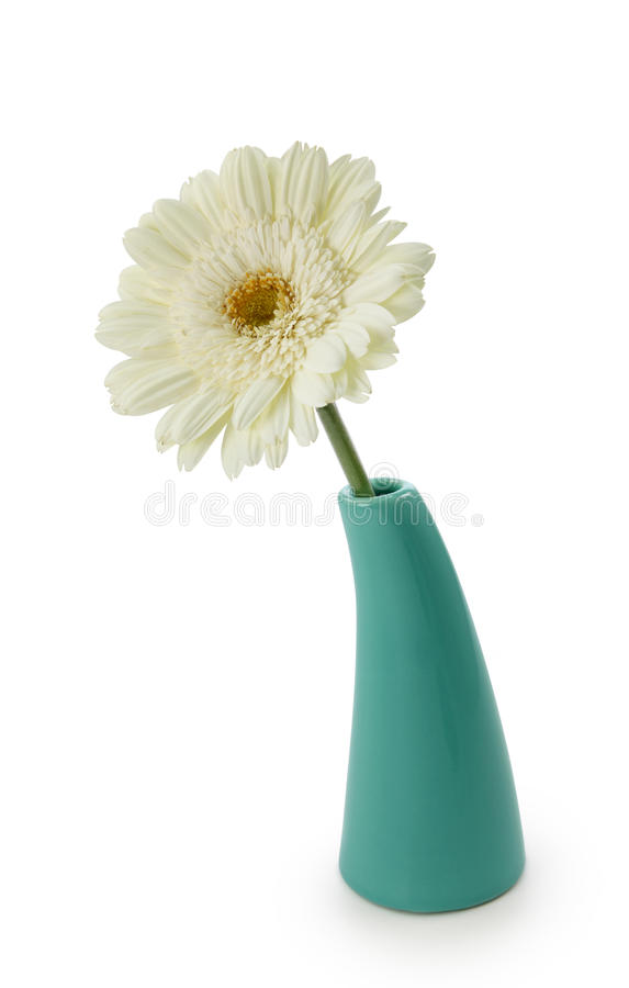 Fleur dans le vase photos libres de droits