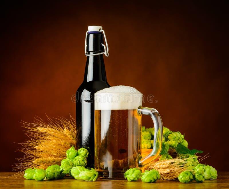 Fleur de bière et d'houblon photos libres de droits