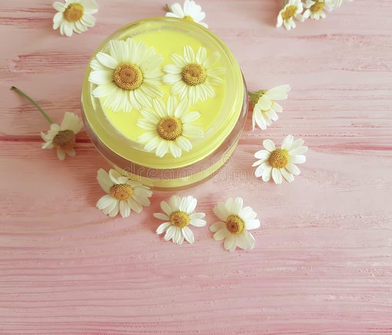 Fleur de camomille, crème cosmétique de bien-être d'extrait de relaxation de peau sur un fond en bois rose photo stock