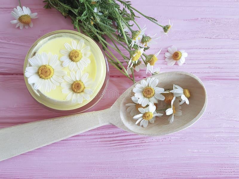 Fleur de camomille, crème cosmétique de bien-être d'extrait sur un fond en bois rose images stock