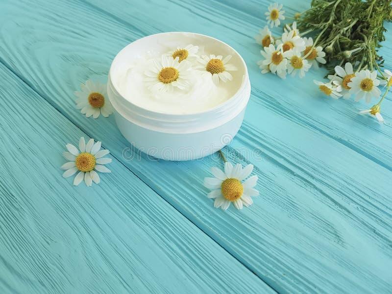 Fleur de camomille, produit cosmétique de crème de peau d'extrait sur un fond en bois bleu photos stock