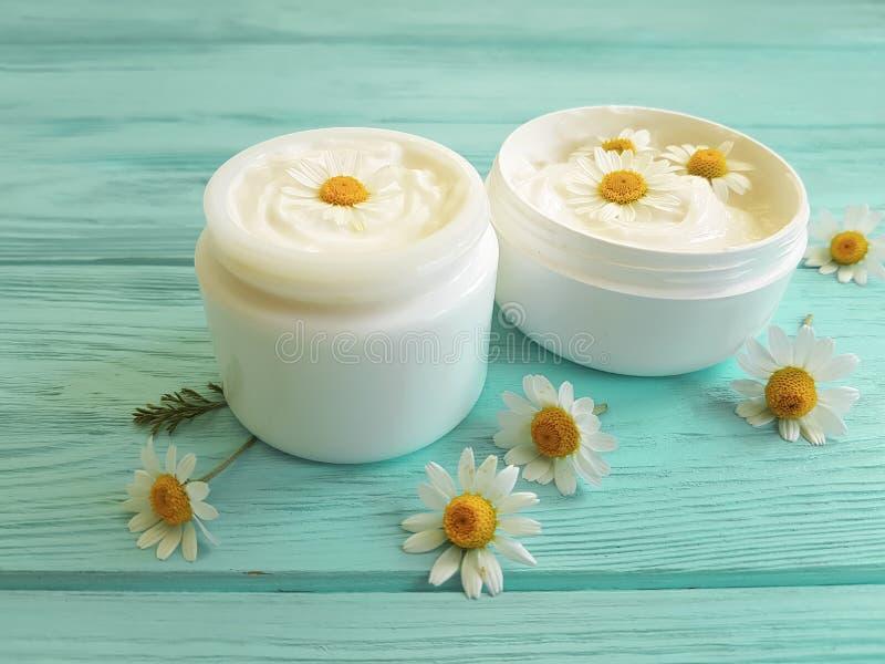 Fleur de camomille, produit cosmétique de crème de peau témoin de traitement d'extrait sur un fond en bois bleu photographie stock libre de droits