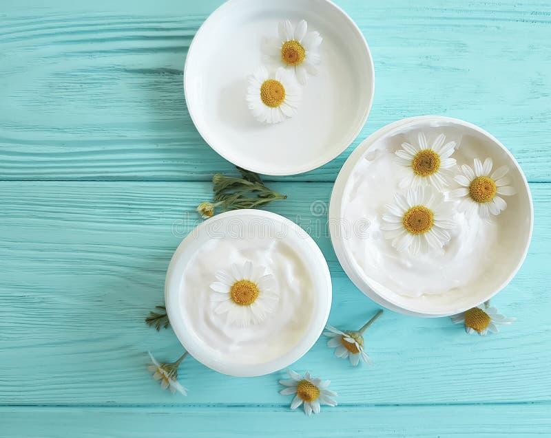 Fleur de camomille, produit cosmétique de crème de peau témoin de traitement de protection d'extrait sur un fond en bois bleu images libres de droits