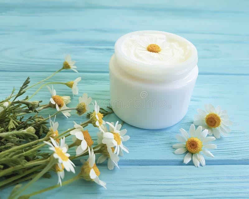 Fleur de camomille, produit cosmétique de crème de peau de traitement d'extrait sur un fond en bois bleu photos libres de droits