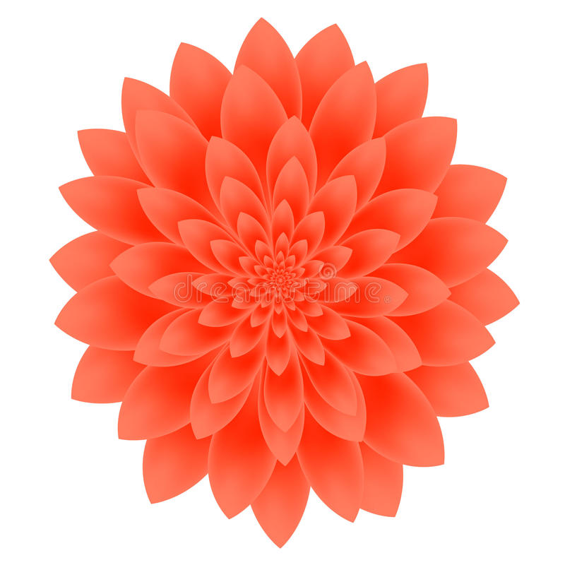 Fleur de dahlia d'isolement sur le fond blanc illustration de vecteur