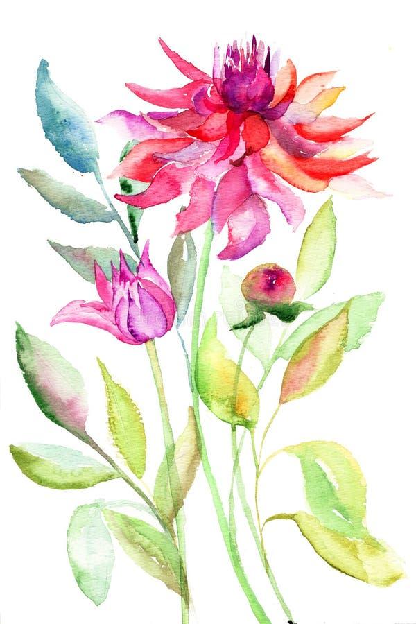 Fleur de dahlia, illustration d'aquarelle illustration stock