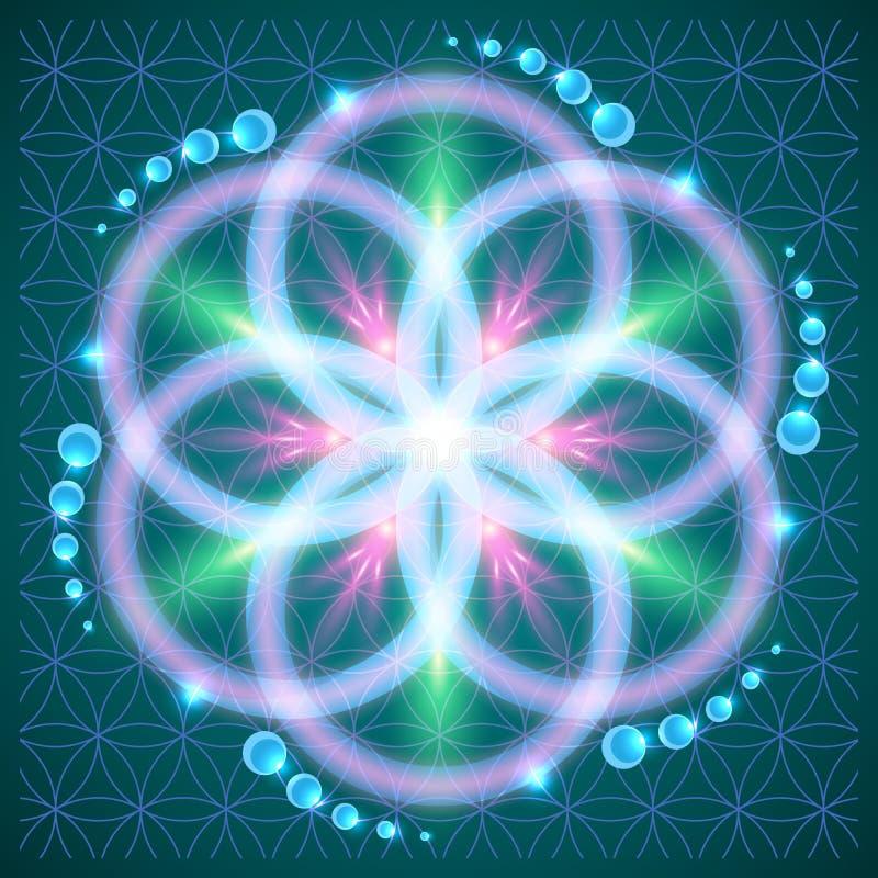 Fleur de durée illustration de vecteur