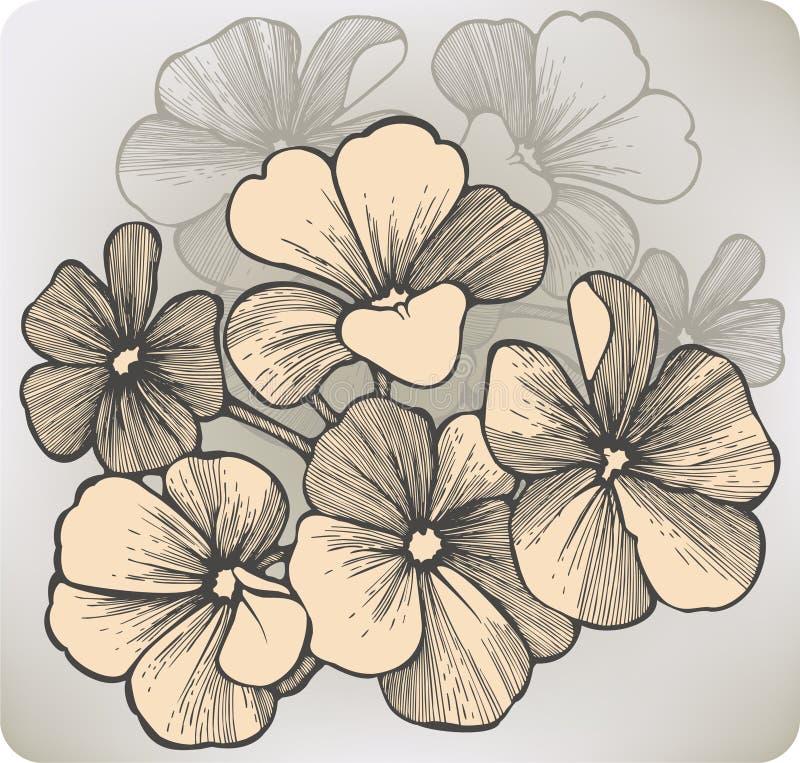 Fleur de géranium, main-dessin. Illustration de vecteur illustration libre de droits
