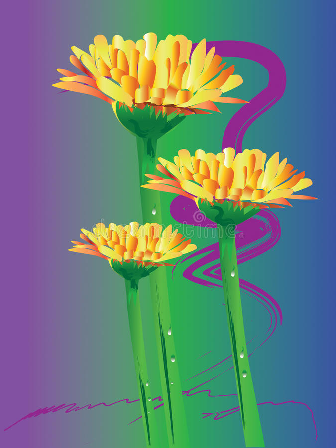 Fleur de gerbera de marguerite illustration libre de droits