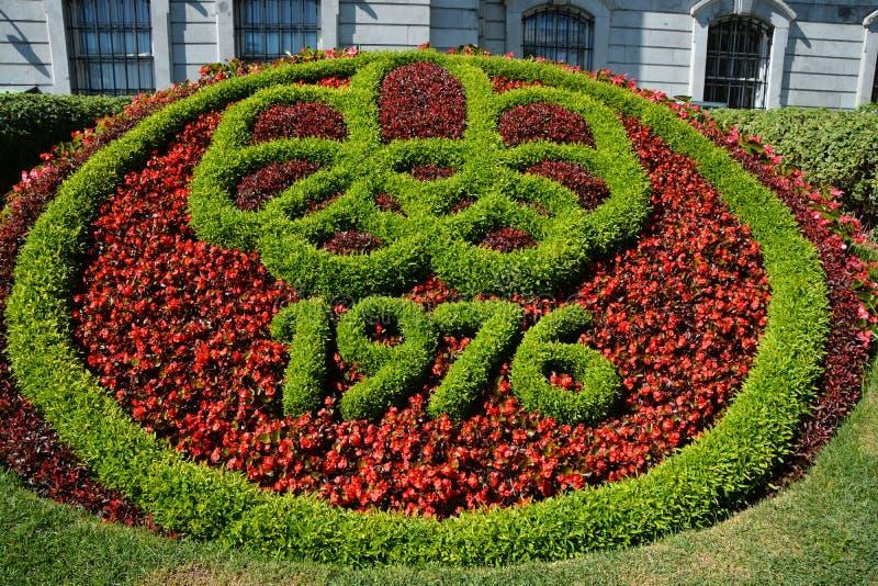 Fleur de literie de tapis de Mosaiculture photos stock