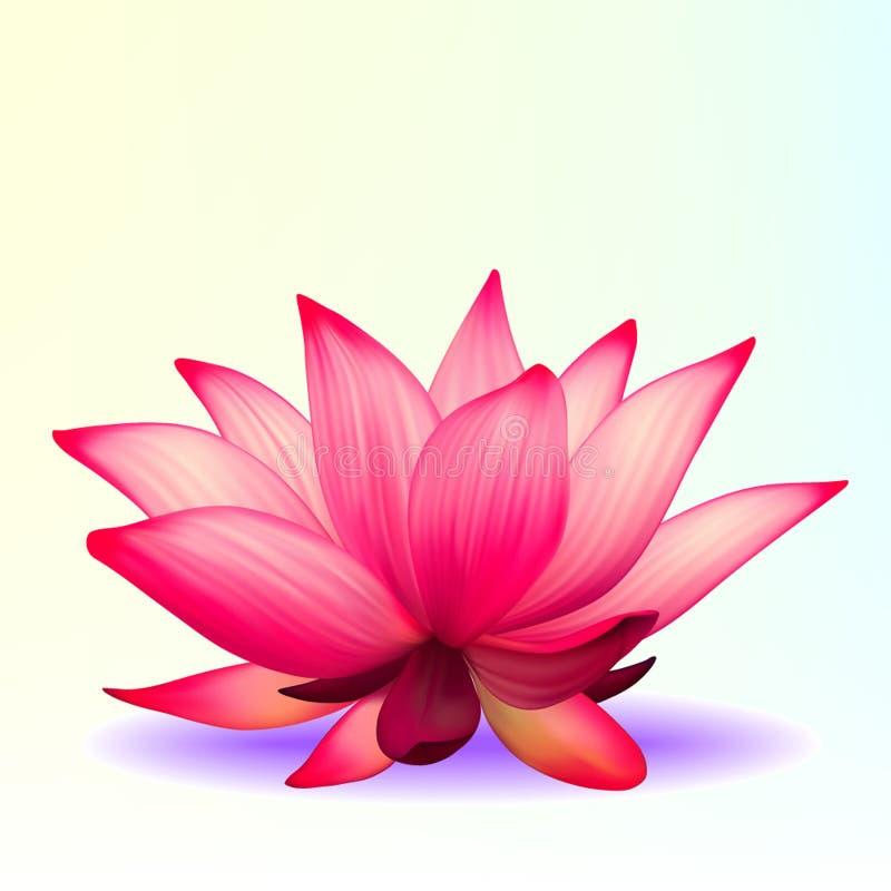 Fleur de lotus Photo-realistic illustration libre de droits