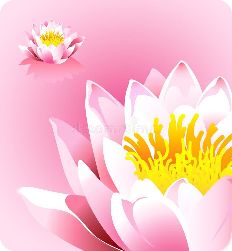 Fleur de lotus rose - forces de thème de nature illustration de vecteur