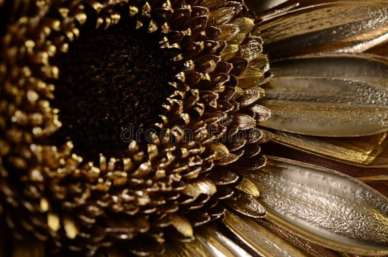 Fleur de marguerite couverte de peinture d'or images libres de droits